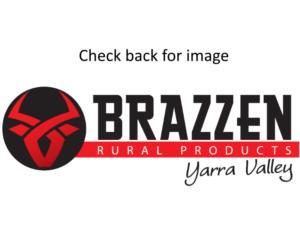 Brazzen Image Prending